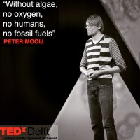 Peter Mooij